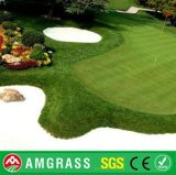 Putting Green Grass sintético e Golf Turf