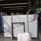 Mattonelle di pavimento di pietra naturali di marmo bianche della lastra di buona vendita