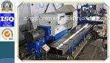Grande tornio orizzontale resistente di CNC della Cina con la funzione stridente per i cilindri (CG61160)