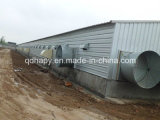 L'azienda avicola della struttura d'acciaio si è liberata di con la strumentazione dell'alloggiamento