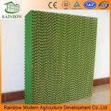 Grüne Farben-Zellulose-Auflage für Gewächshaus