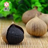 Alho preto de alta qualidade e alho preto feito de China 300g