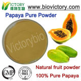 Polvere della papaia degli additivi della bevanda di sorgente della frutta