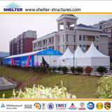 Outdoor Event Party를 위한 C Series Pagoda Tent