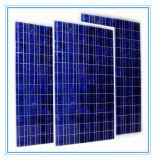 250W TUV CER RoHS anerkannte Sonnenkollektor-Zellen