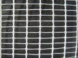 [2.88مّ] سوداء [50غسم] مضادّة حبّة برد شبكة لأنّ بستان