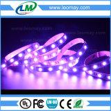 Ändernde Farbe RGB LED entfernt SMD5054 60LEDs/m mit CER