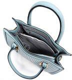 Verkoop van de Handtassen van het Merk van de Handtassen van de Ontwerper van de Manier van de Handtassen van de Ontwerper van de Dames van de manier de Uitstekende
