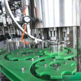 Linha de produção de vidro da máquina e da cerveja de engarrafamento