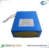 24V 20ah Lithium-Batterie für langsames Fahrzeug des Roboter-/Agv/