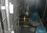 Congelador rápido IQF do túnel da correia da massa de pão do marisco