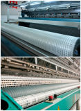 Bi-richting Plastic Geogrid voor de Weg Geogrid van het Grint van de Oprijlaan van China