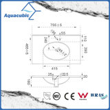 Bacino della stanza da bagno e dispersore di un pezzo del controsoffitto (ACB7880)