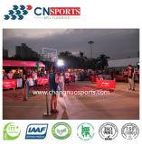 Het openlucht Hof van het Basketbal Si-Pu, het Hof van Sporten van het Houten Patroon van de Textuur