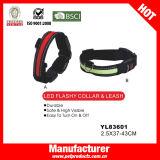 LED-Hundehalsring, Kragen des Hundled, Haustier-Produkt (YL83594)