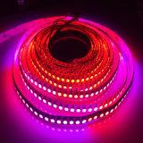 Tira direccionable de la FCC DMX Ws2811 LED de RoHS del Ce