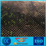 Arrêtoir de gravier de nid d'abeilles de Plastic/HDPE Geocell