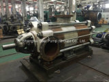 Horizontale mehrstufige Schleuderpumpen hergestellt in China verwendet zum Abwasser-Wasser
