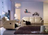 余暇のイタリアの革ソファーの家具(893)