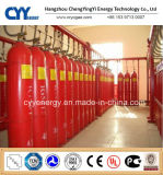 Steel sans couture Fire Fighting CO2 Gas Cylinder avec Different Capacities