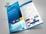 Kundenspezifisches farbenreiches Plakat-Drucken, Farbton-Förderung-Blättchen mit Matt-Laminierung