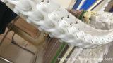 Corrente transportadora resistente ao calor da transmissão de Hairies com Ce
