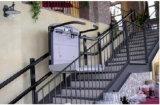 중국은 휠체어 플래트홈 엘리베이터를 만들었다