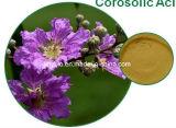 Extracto de la hoja del ácido 1%~ el 98% Banaba de Corosolic, natural puro