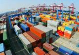 Consolidação de frete marítimo LCL Guangzhou para a Bélgica