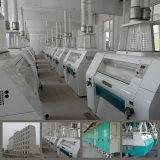 新しいデザインの300t/24h小麦粉の製造所