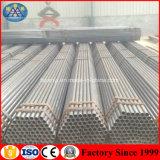 Tubulação de aço galvanizada de MERGULHO quente do sistema do andaime da construção Q235