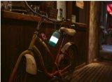 Lumière extérieure portative de nuit de forme de bouteille à lait pour camper