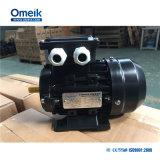 Omeik Wechselstrom 3 Phasen-Pumpen-Motor