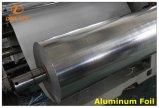 Torchio tipografico automatizzato ad alta velocità di rotocalco con l'azionamento di asta cilindrica meccanico (DLY-91000C)