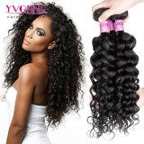 Tessuto riccio italiano dei capelli umani di Remy del Virgin brasiliano classico di stile di Yvonne