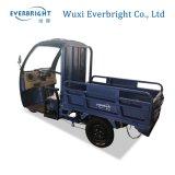 elektrische Ladung-Ladevorrichtung der Eingabe-60V800W mit preiswertem Preis, elektrisches Dreirad