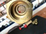 Médaille de Bronze en laiton à filetage femelle à vérifier la soupape de pivotement