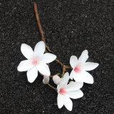 China Proveedor de regalos San Valentín más populares de Faux Magnolia