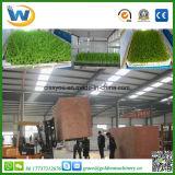 Hierba de cebada automática llena del trigo que planta la máquina Growing (WSYJ)
