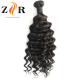 加工されていないインドの自然なバージンのRemyの人間の毛髪の織り方の緩いカール様式の卸売
