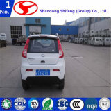 Piccola veicolo elettrico della Cina/automobile/bici/motorino/bicicletta elettrica/motociclo elettrico/motociclo/automobile elettrica di /RC della bicicletta/motorino elettrico