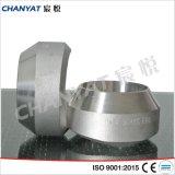 ステンレス鋼はSockolet SUS304、SUS304h、SUS304L、SUS310を造った