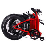 바닷가 눈 E 자전거 48V 750W 후방 모터 리튬 건전지 전기 자전거