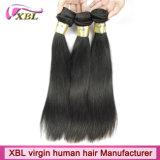 La livraison rapide 100% 8A non transformé cru vendent le cheveu en gros d'Indien de Vierge