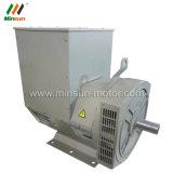doppelter Peilung 80kw Wechselstromgenerator-Motor