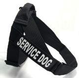 Nouveaux vêtements pour animaux de compagnie chien laisse Camo de faisceau
