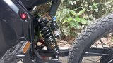 Leili Сверхдержавой Stealth-смертник взорвал 72V 5000W Ebike Moutain велосипедов для продажи