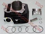 Scompartimento Bajaj Disvover del cilindro di PARA Motocicleta del kit di Cylindro