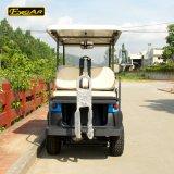 作中国2+2の助手席の電気ゴルフカート