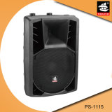 15 Zoll PROpa-Systems-Plastik-DJ-im Freien passiver Lautsprecher PS-1115
